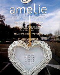 svatebni agentura amelie